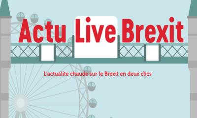 Actu Live Brexit, l'information aux entreprises